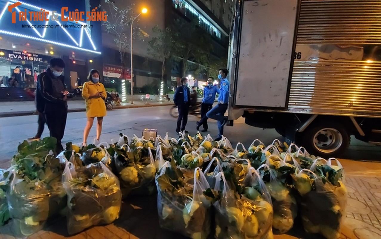 """Nguoi Ha Noi xuyen dem """"giai cuu"""" nong san Hai Duong-Hinh-3"""