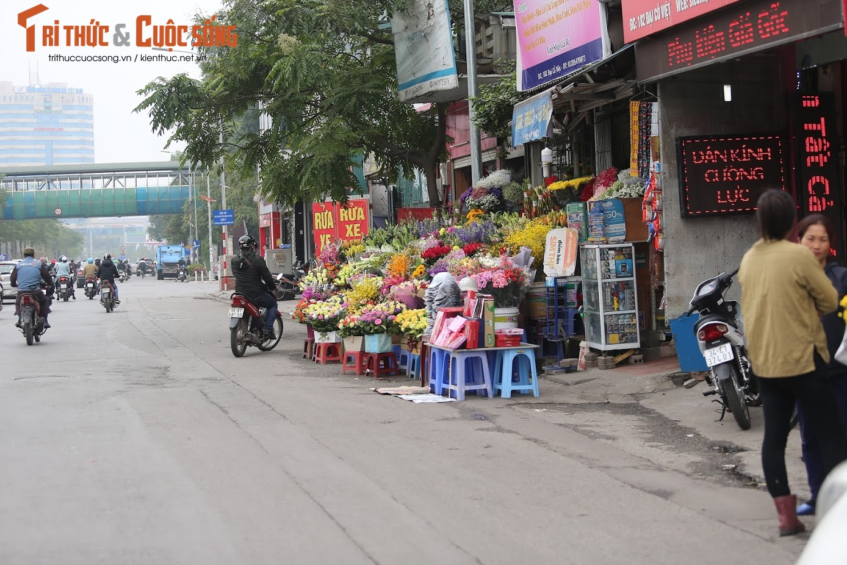 Hoa Valentine e am, u ru duoi nang nong-Hinh-2