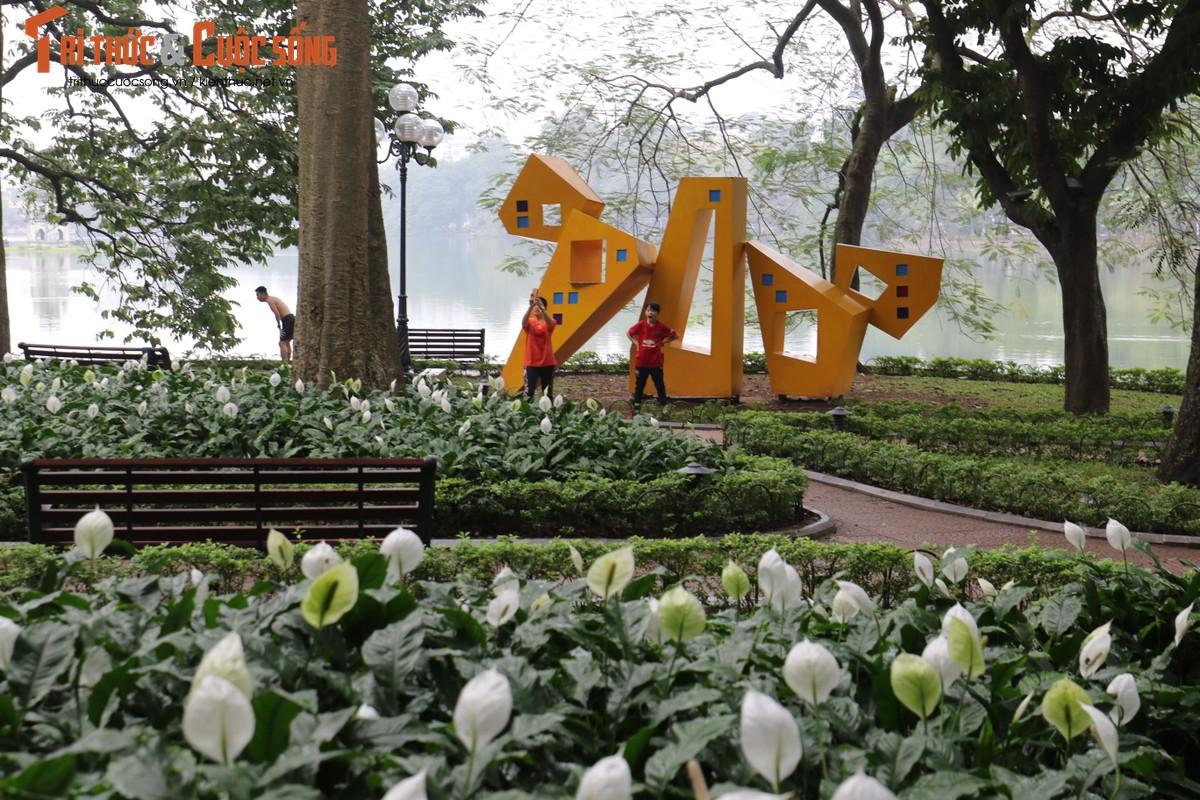 Duong pho Ha Noi rop co hoa tung bung chao don nam moi 2020-Hinh-10