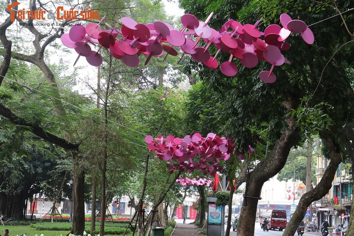 Duong pho Ha Noi rop co hoa tung bung chao don nam moi 2020-Hinh-11