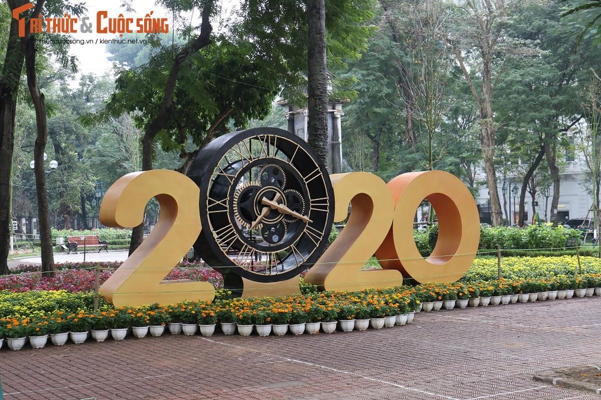 Duong pho Ha Noi rop co hoa tung bung chao don nam moi 2020-Hinh-12