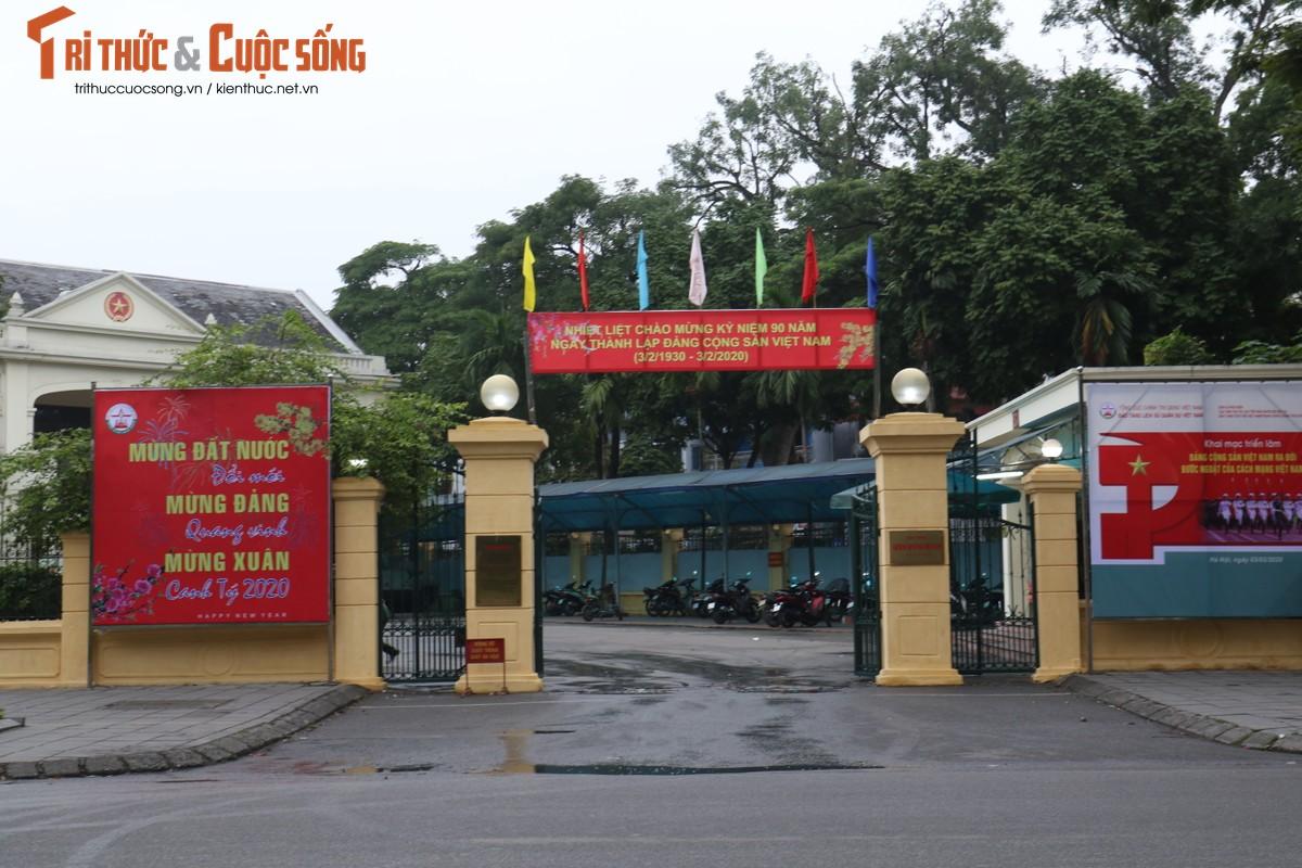Duong pho Ha Noi rop co hoa tung bung chao don nam moi 2020-Hinh-3