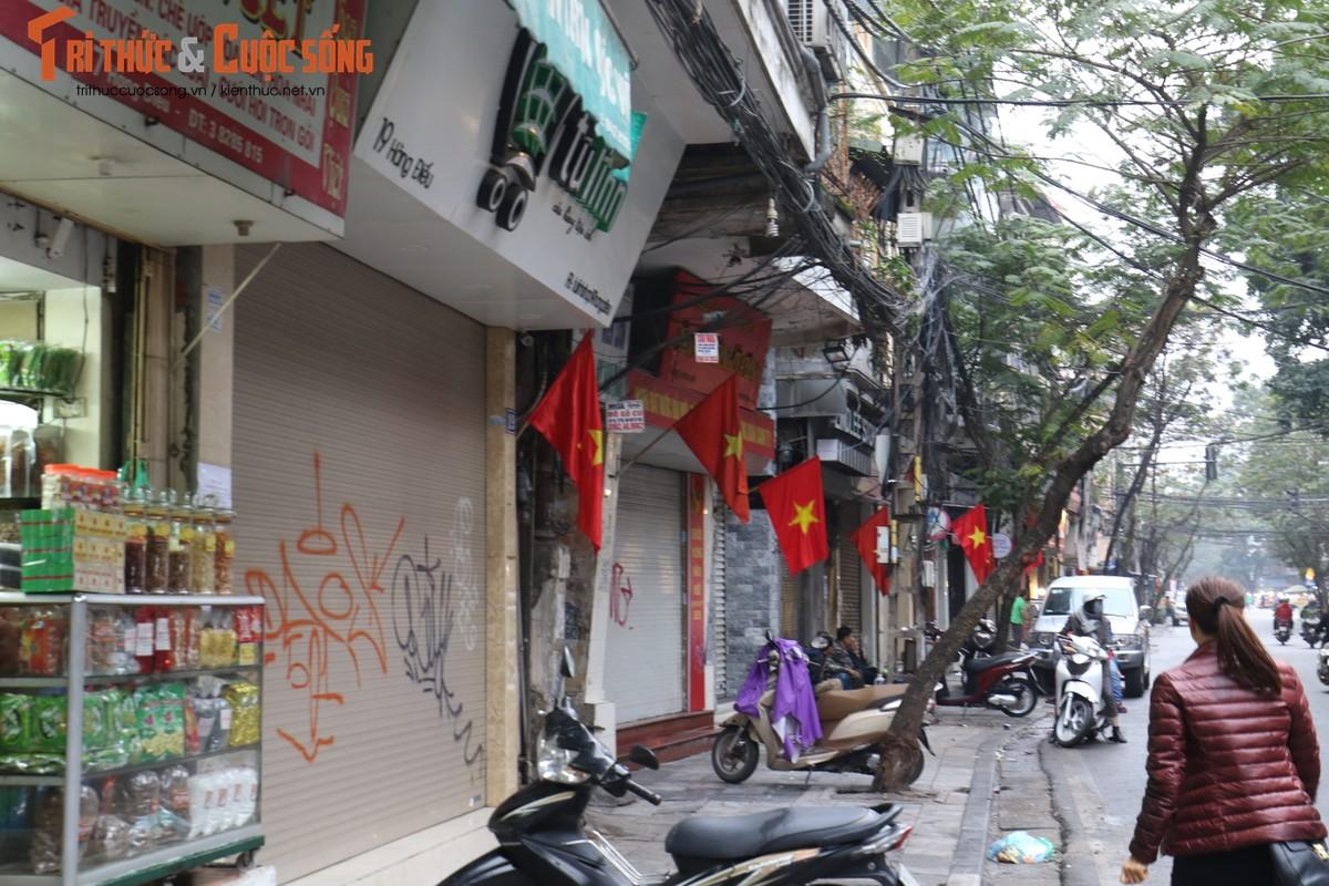 Duong pho Ha Noi rop co hoa tung bung chao don nam moi 2020-Hinh-5