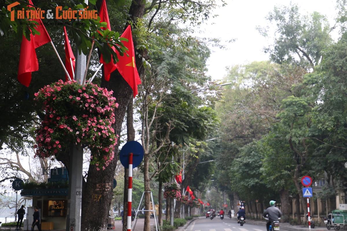 Duong pho Ha Noi rop co hoa tung bung chao don nam moi 2020-Hinh-6