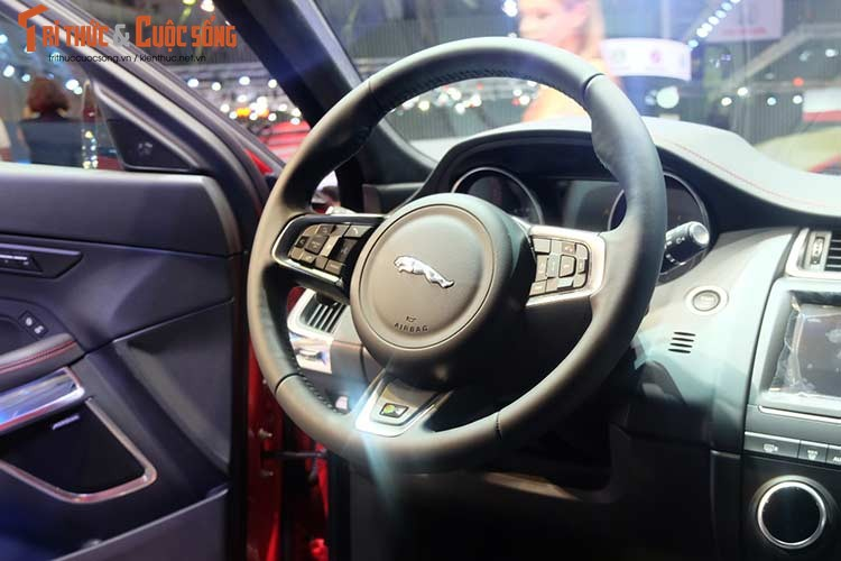 Can canh Jaguar E-Peace