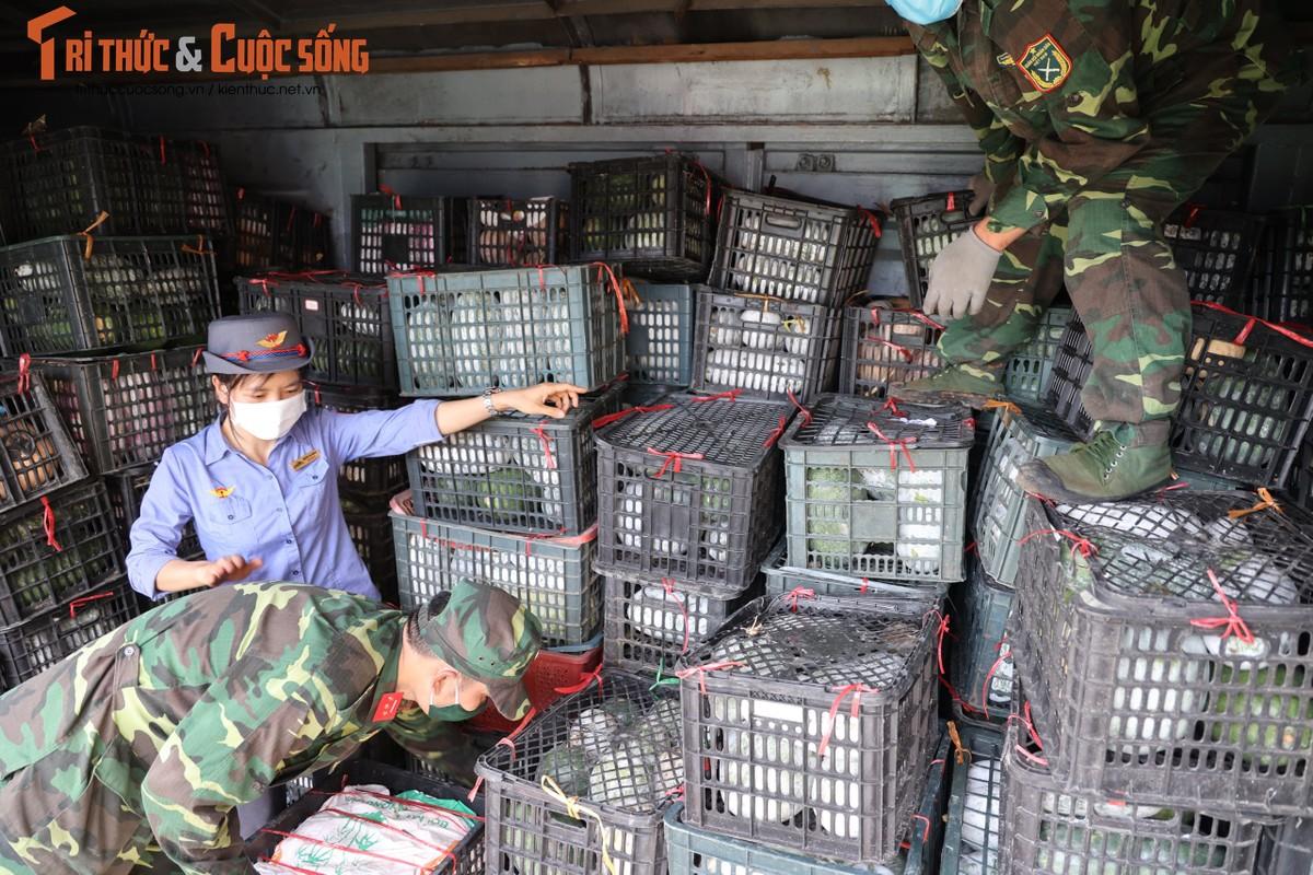 """400 tan hang hoa, nhu yeu pham len duong vao Nam """"tiep suc"""" chong dich COVID-19-Hinh-8"""