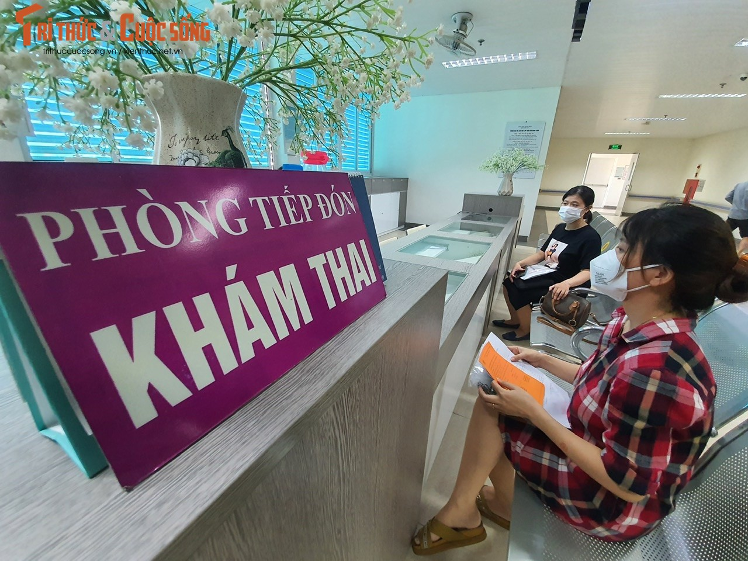 Hon 500 thai phu tren 13 tuan o Ha Noi duoc tiem Pfizer-Hinh-3