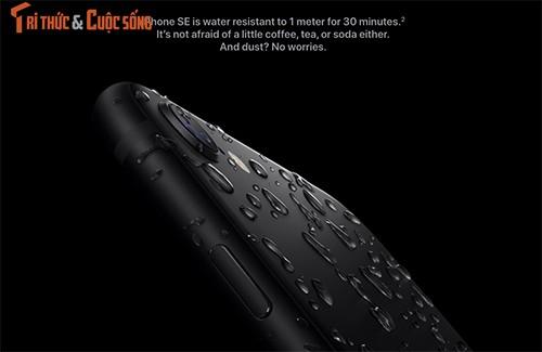 IPhone SE 2020 trinh lang: Hinh hai iPhone 8, suc manh iPhone 11 Pro Max-Hinh-2