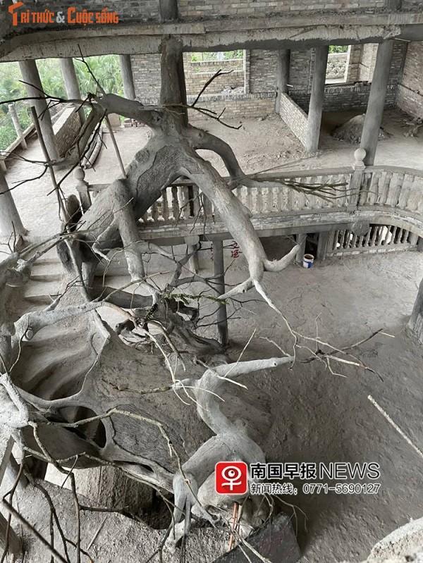 Lao nong chi hon 50 ty xay biet thu ky quai nhat Trung Quoc-Hinh-3