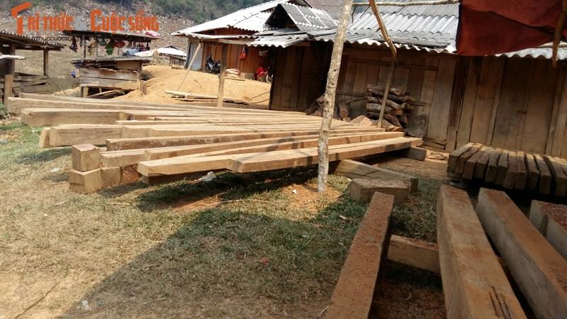 Son La: Tan mat xem lam tac pha rung Chieng Khua-Hinh-3