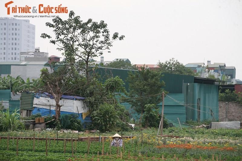 Hang loat cong trinh xay dung trai phep tren dat nong nghiep o Khuong Dinh - Ha Noi?-Hinh-2