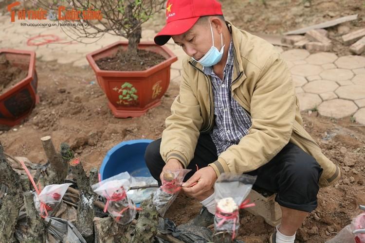 "Dao Nhat Tan nhon nhip ""ve vuon"" sau nhung ngay choi Tet-Hinh-9"